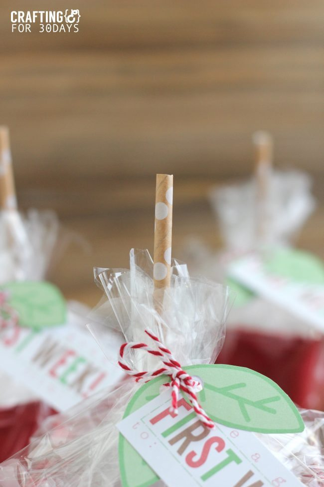 Back to School Apple Gift Baskets - cute gift idea to give to the teacher!  with printables included.