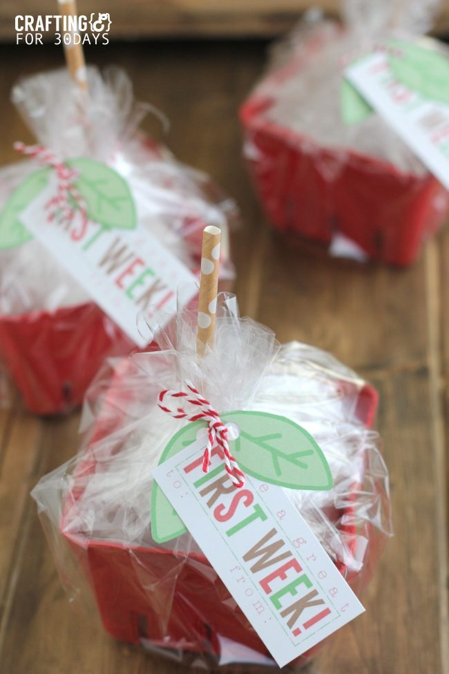 Back to School Apple Gift Baskets - cute gift idea to give to the teacher!  with printables included from Crafting E via thirtyhandmadedays.com