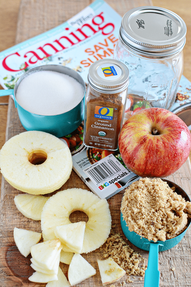 Make this amazing Caramel Apple Jelly (ingredients) - perfect to wrap up summer and welcome in fall. Get the recipe at thirtyhandmadedays.com
