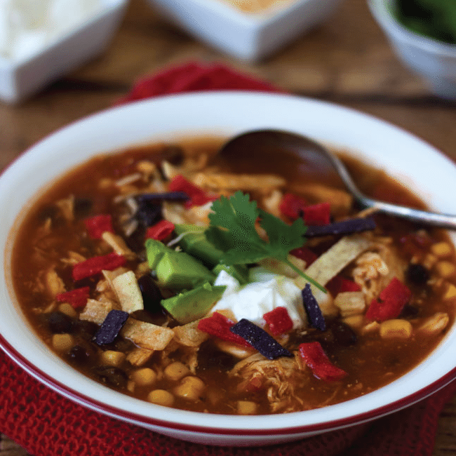 Chicken Enchilada Soup: 20+ Instant Pot Recipes to Try