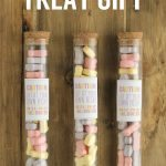 Halloween Gift Idea: Test Tube with Printables