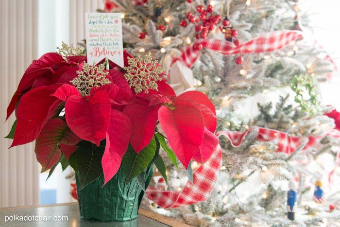 poinsettia gift idea for Christmas