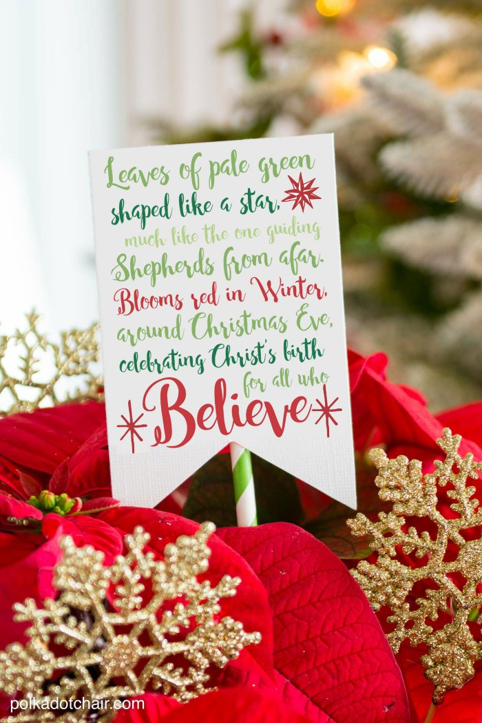 printable poinsettia gift tag