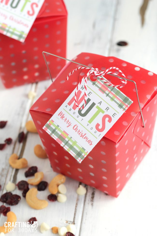 Holidays: Easy Nut Mix Neighbor Gift - make this super simple treat for Christmas an to celebrate the holidays! from CraftingE via www.thirtyhandmadedays.com
