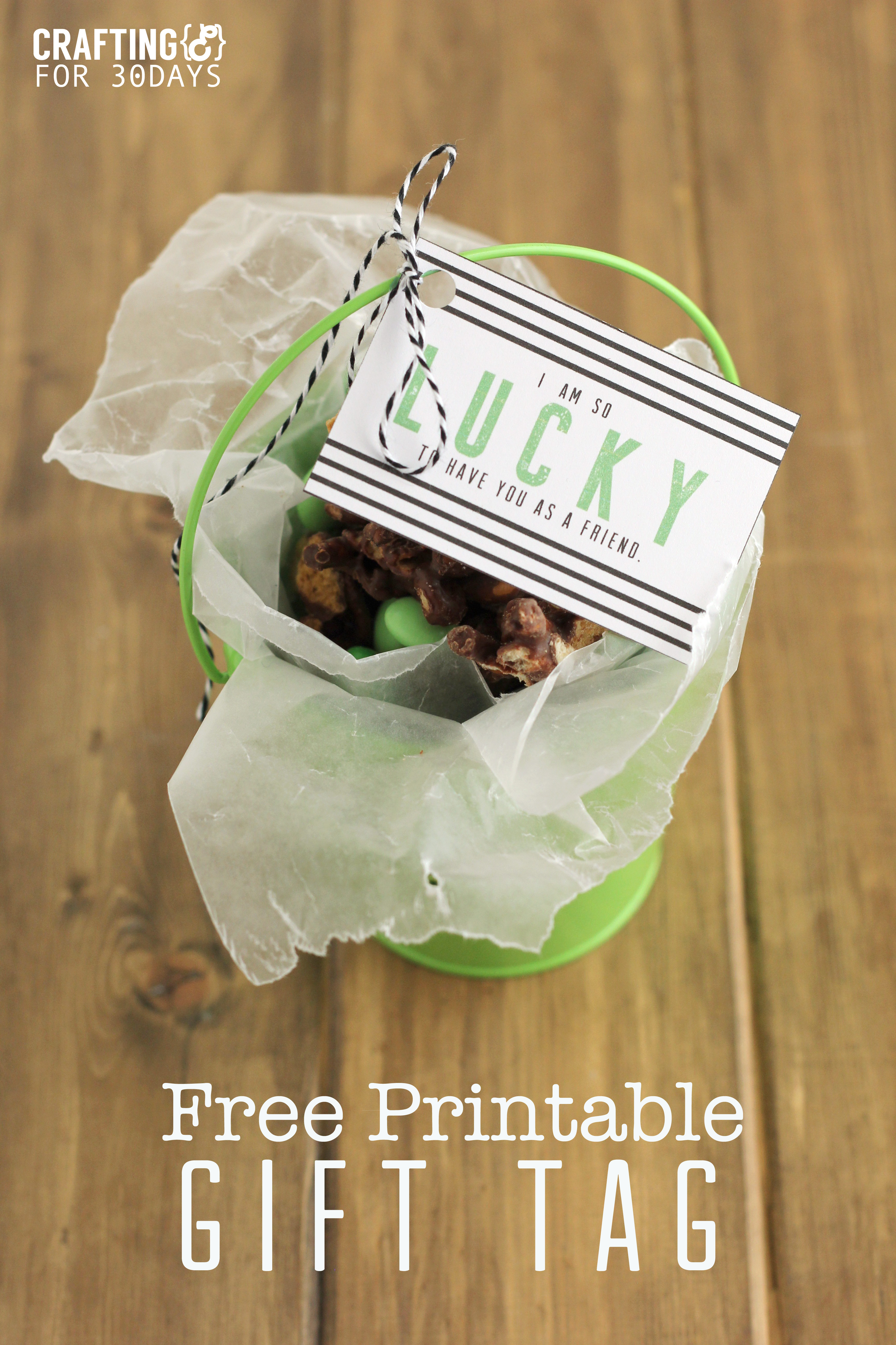Free Printable St. Patrick's Day Gift Tag