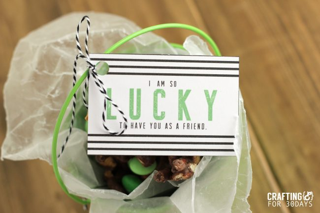 Free Printable St. Patrick's Day Gift Tag from CraftingE