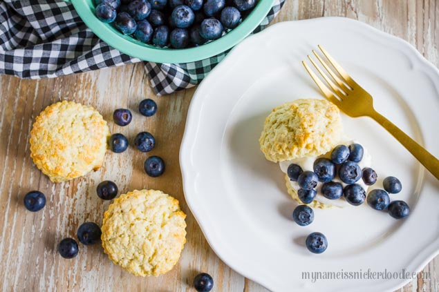Blueberry Shortcake Recipe - the perfect summer dessert!  My Name is Snickerdoodle