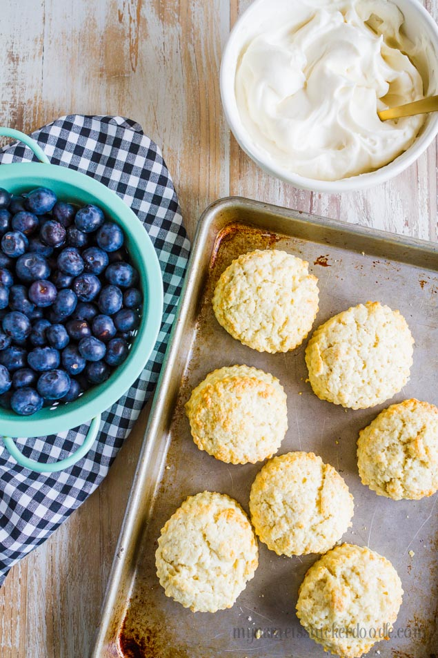 Blueberry Shortcake Recipe - the perfect summer dessert! from My Name is Snickerdoodle