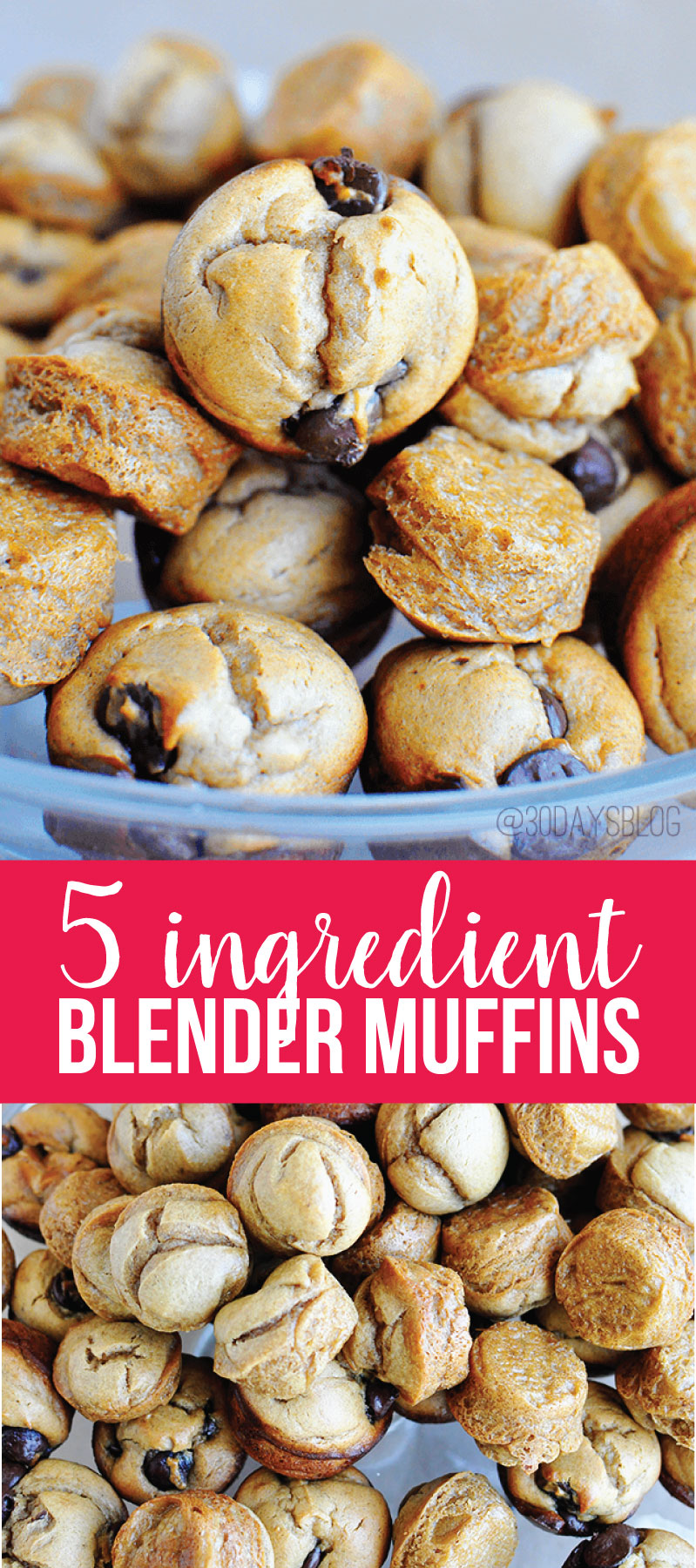 Peanut Butter Banana 5 ingredient blender muffins - these taste amazing, are easy to make and gluten free!  www.thirtyhandmadedays.com