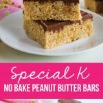Special K Bars - no bake bars - a family favorite via www.thirtyhandmadedays.com