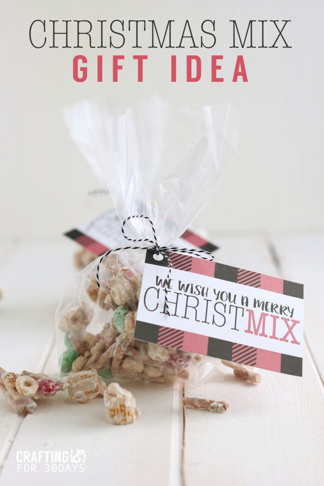 Want to make your friends and neighbors feel special but not brake the bank?  Make these cheap Christmas gifts and deliver to them!  Christmas Mix with printable tags via www.thirtyhandmadedays.com