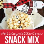 Holiday Kettle Corn Snack Mix - make this treat for friends and neighbors for Christmas! www.thirtyhandmadedays.com