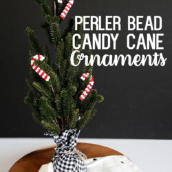 Perler Bead DIY Ornaments