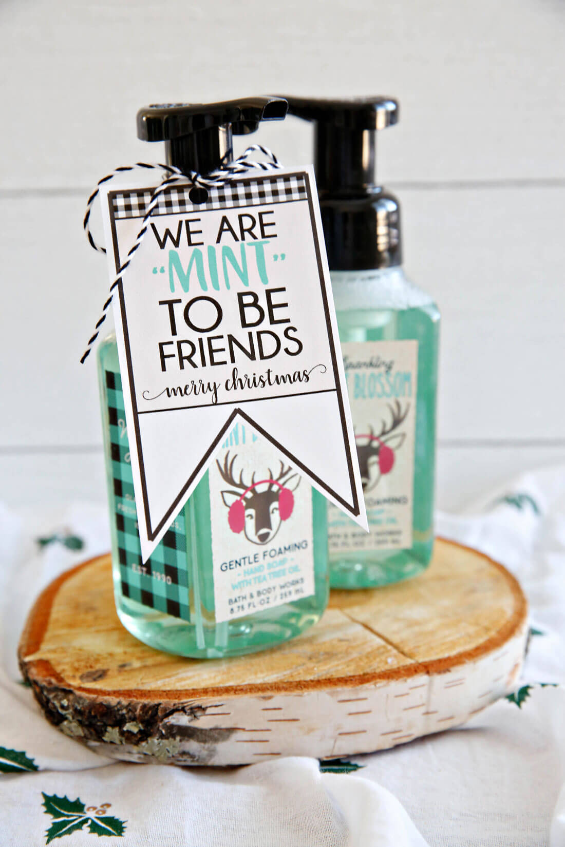 "We're ""mint to be friends"" Christmas tags - download these cute printable tags from www.thirtyhandmadedays.com"