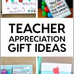 Teacher Appreciation Gifts - a whole bunch of ideas in one spot to help the teacher in you life feel special.