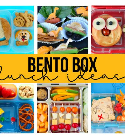 Bento Box Lunch Ideas - a whole bunch of ideas to make lunch fun and delicious!