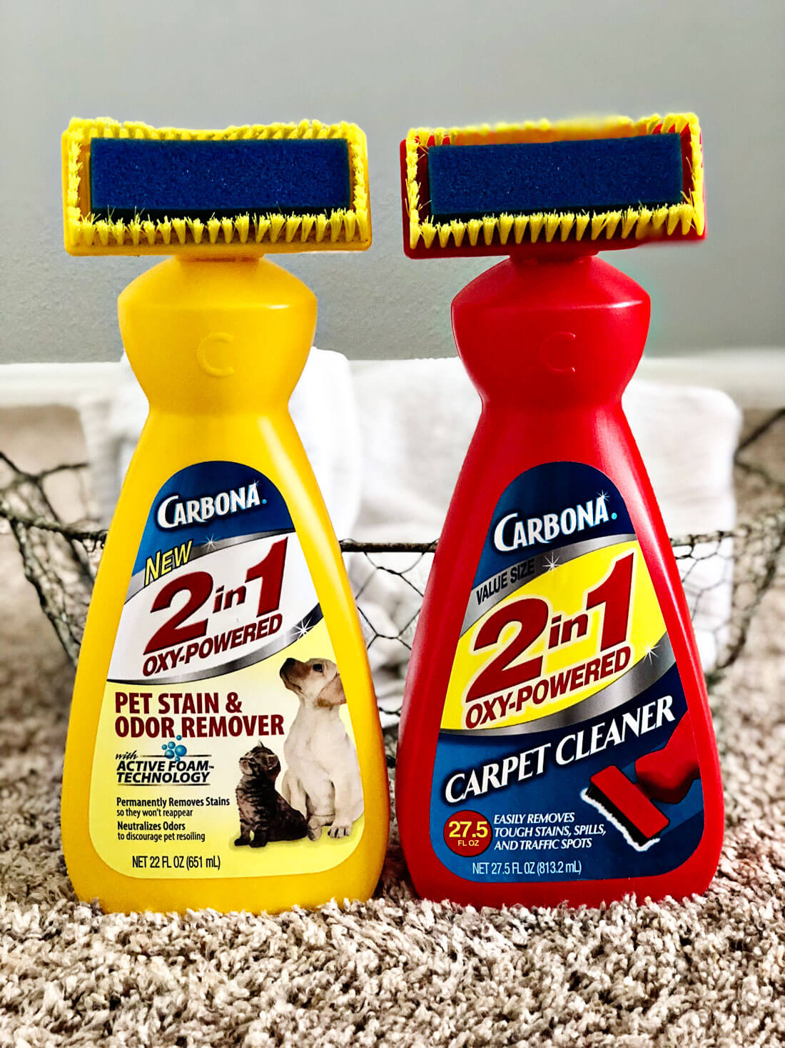 Try Carbona to get those pesky carpet stains out