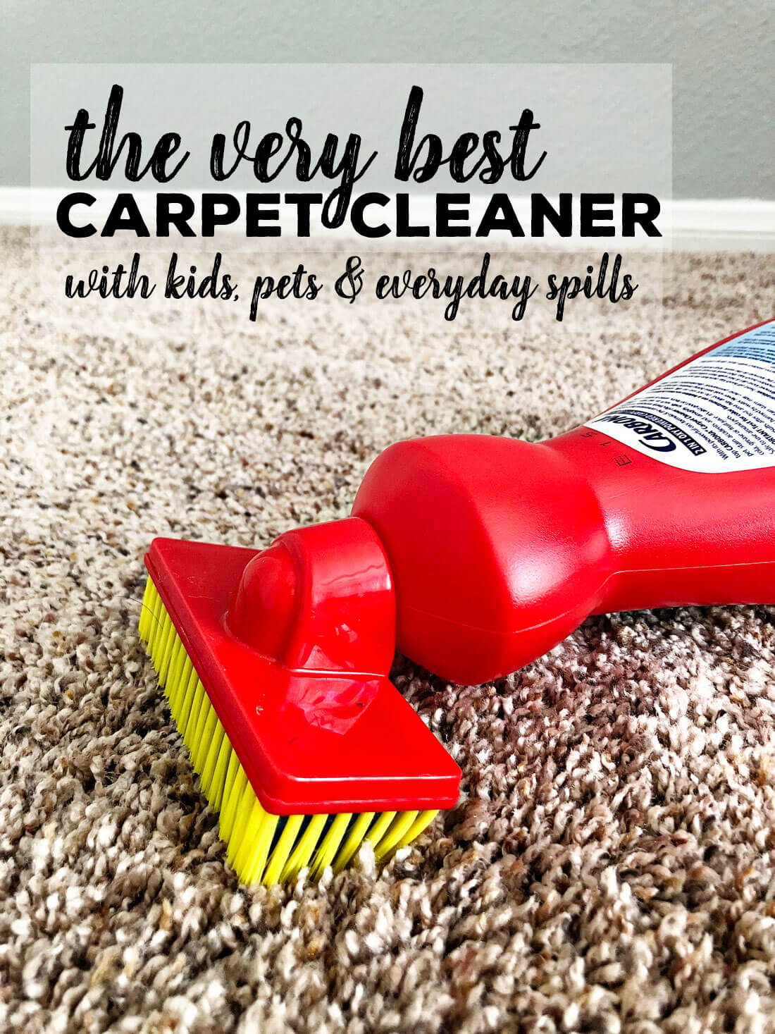 the very best carpet cleaner to use with kids, pets and for every day