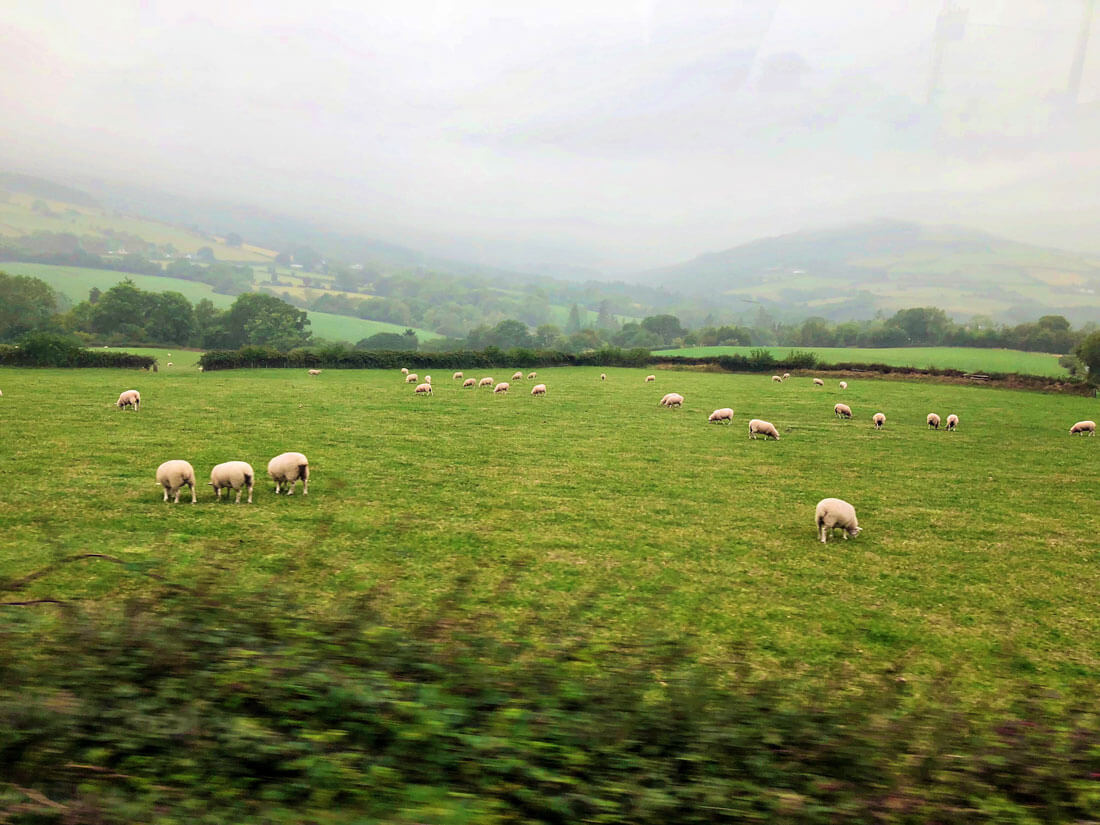The countryside of Ireland