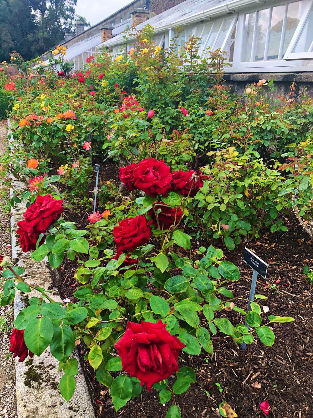 Gardens at Powerscourt Estate in Ireland