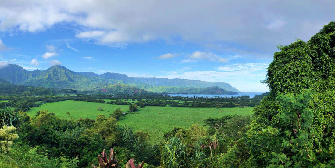 Overlooking Hanalei Bay