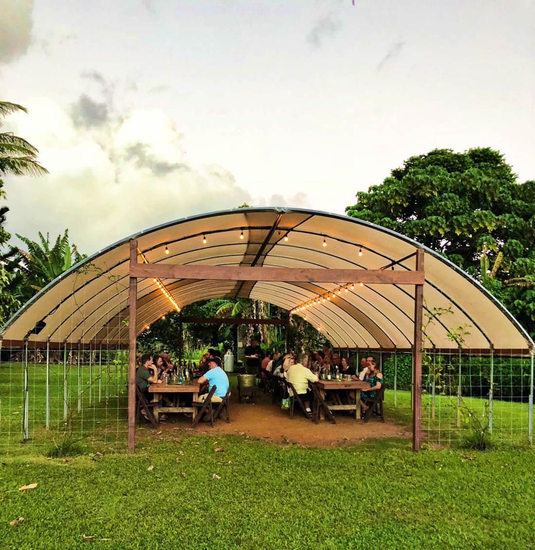 Top Things to Do in Kauai - Kauai Ono