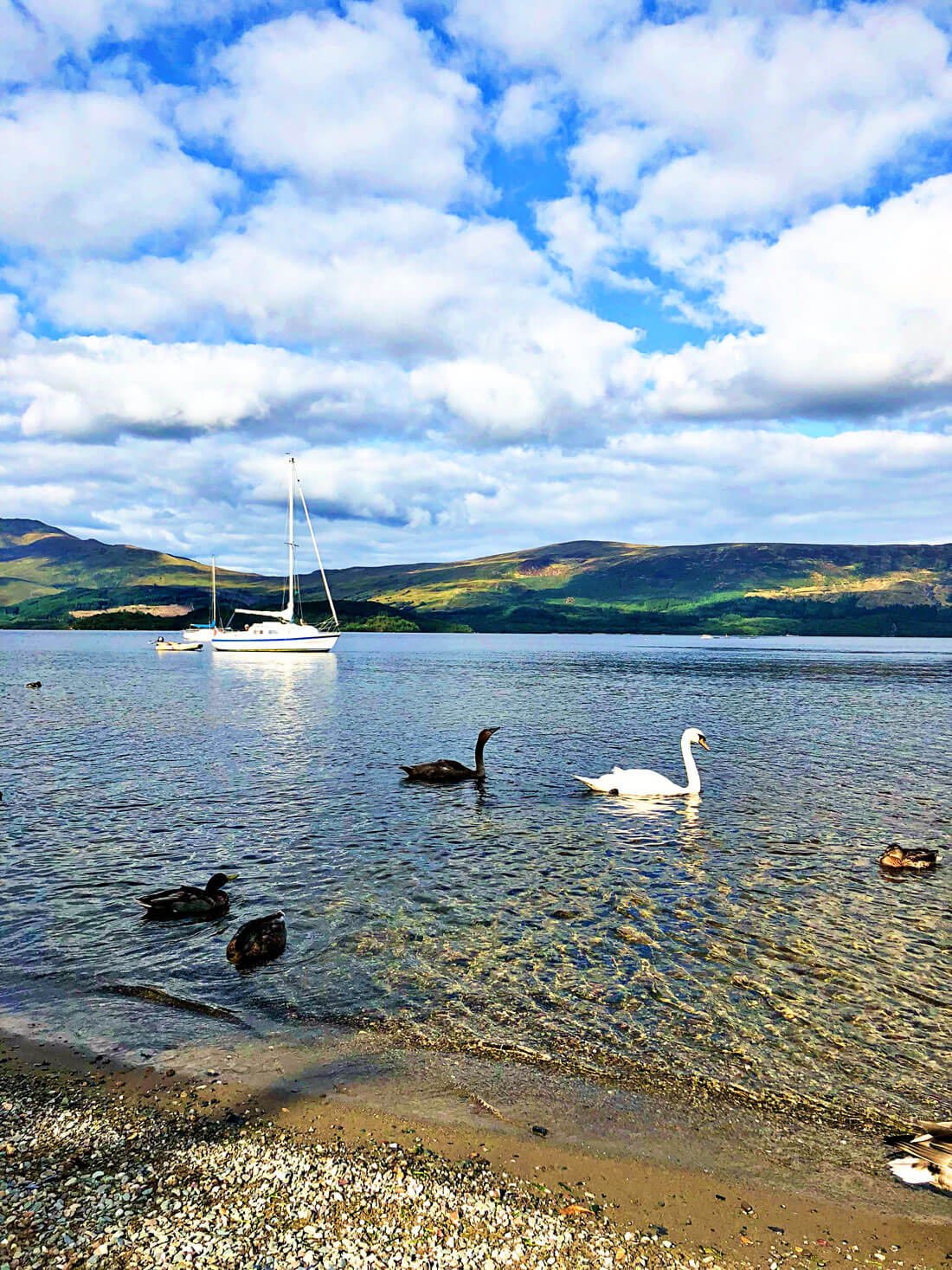Things to do in Scotland - Loch Lommond