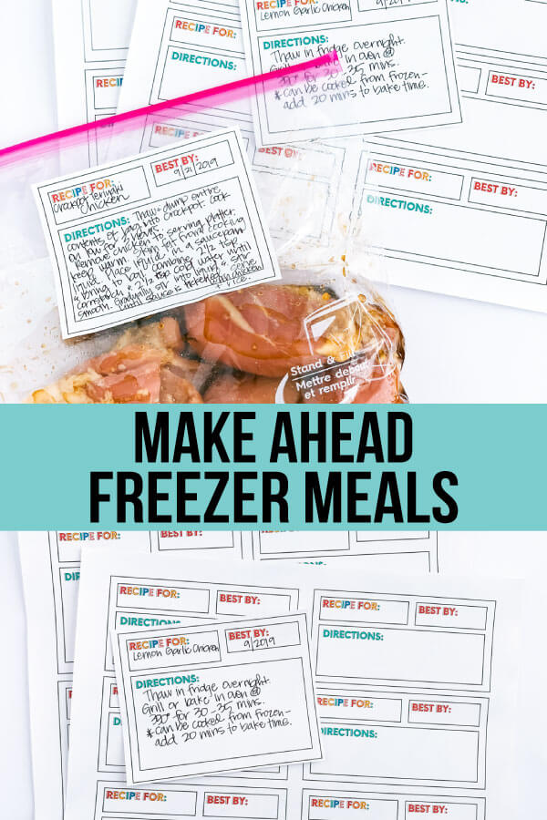 Make Ahead Freezer Meals - the basics on how to get started, what you need and recipes to use. www.thirtyhandmadedays.com
