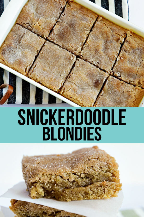 Snickerdoodle Blondies -full pan, easy to make treat with cinnamon and sugar! www.thirtyhandmadedays.com